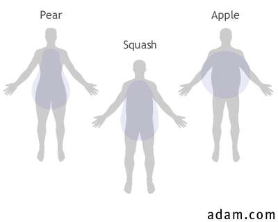 Three Body Shapes